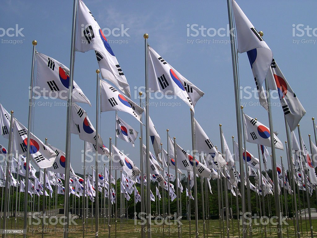 Field of Korean Flags stock photo