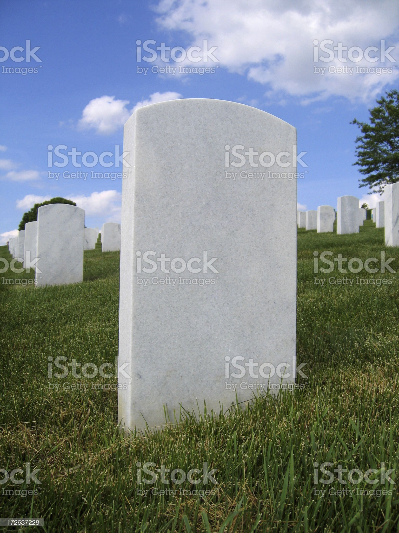 Field of Marble royalty-free stock photo