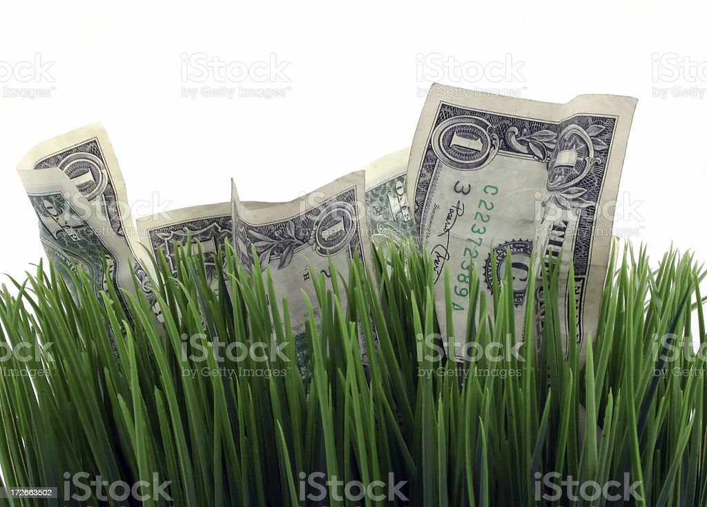 Field Of Money: Front royalty-free stock photo