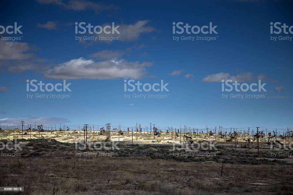 Field of Oil Pumps stock photo