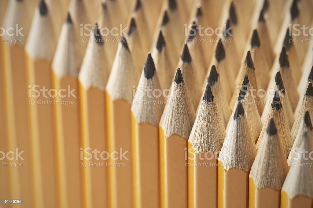 Field of Pencils Tips stock photo