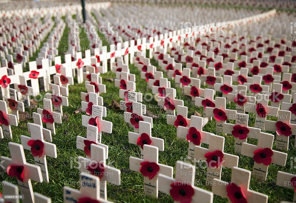 Field of Remembrance, Edinburgh 2012 stock photo