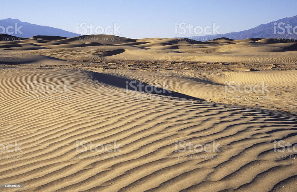 Field of sand dunes in Death Valley royalty-free stock photo