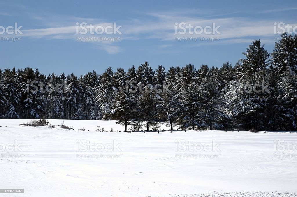 field of snow royalty-free stock photo