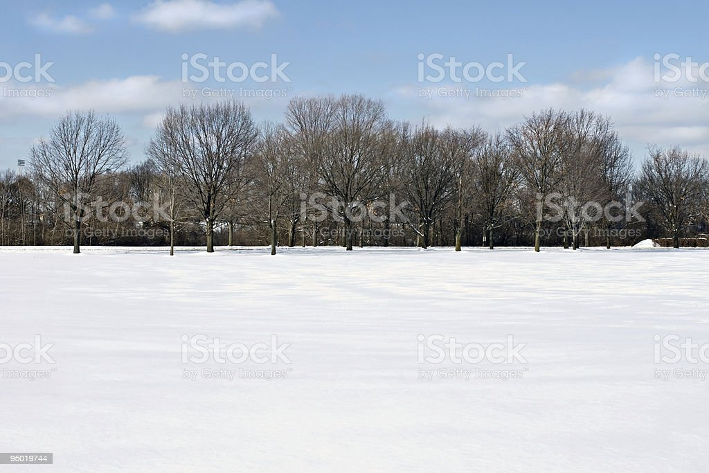 Field of Snow with Tree Line royalty-free stock photo