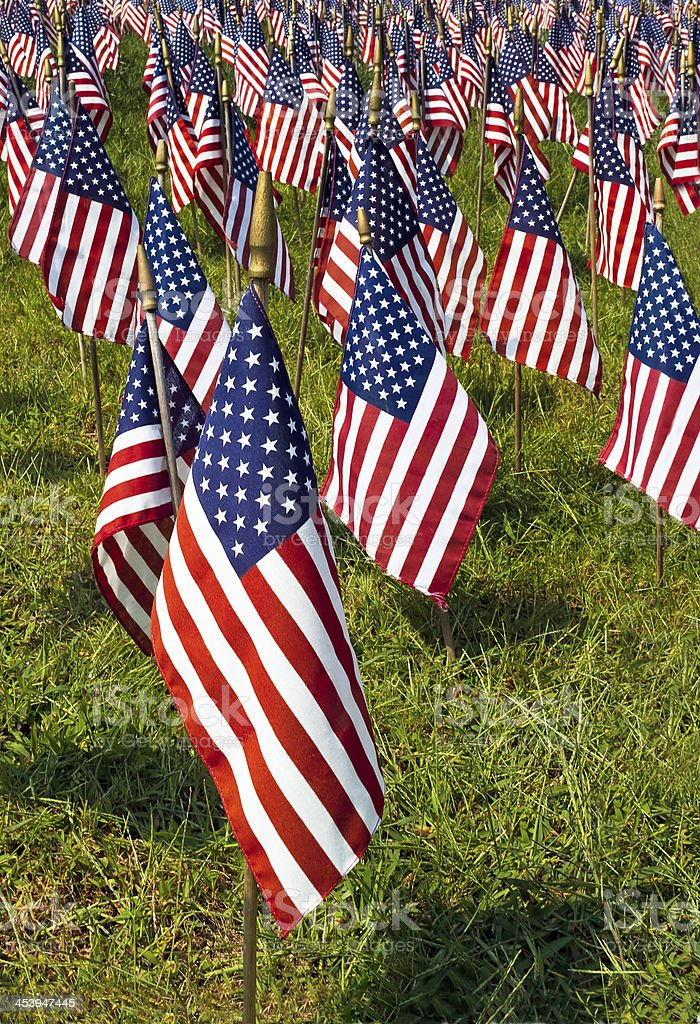 Field of United States Flags royalty-free stock photo