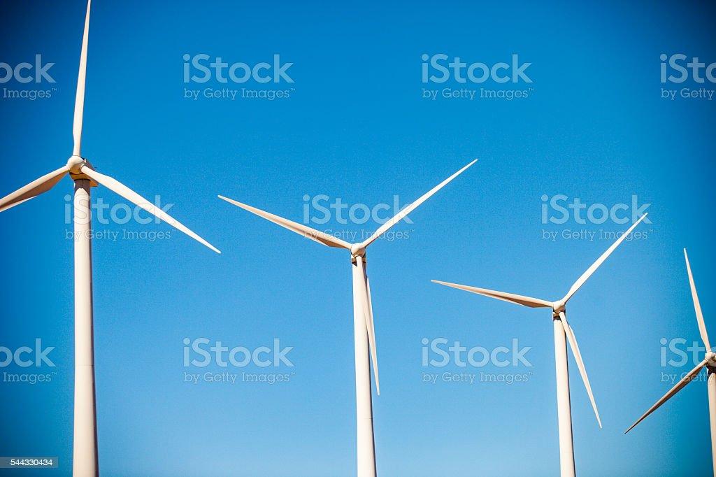 Field of Windmills stock photo