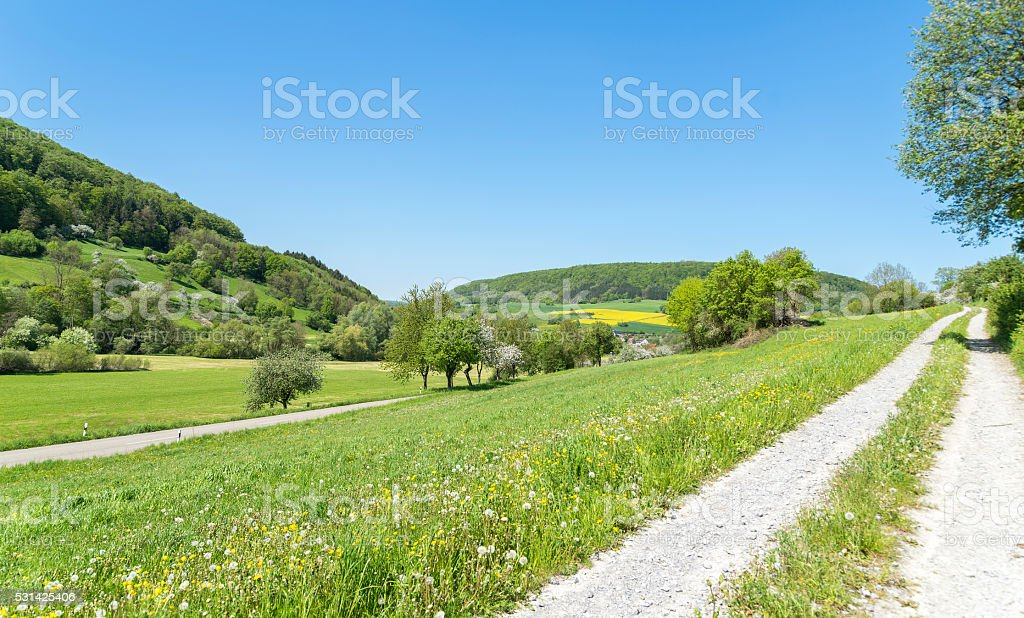 field path at spring time stock photo