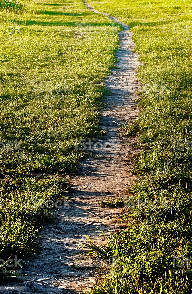 Field path royalty-free stock photo