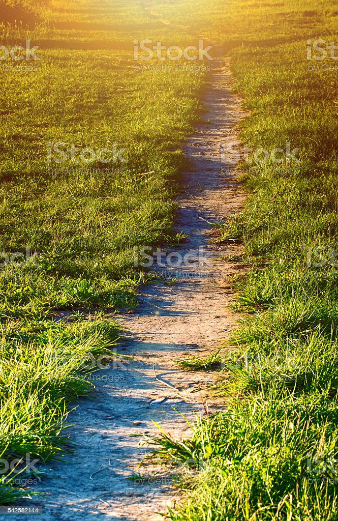 Field path royalty-free stock photo