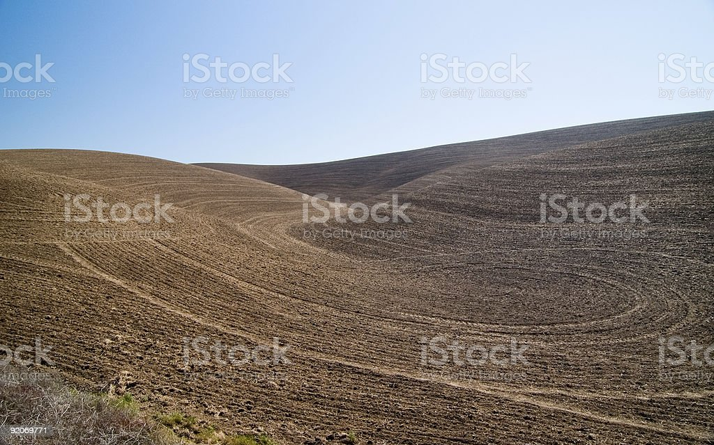 Field plowed under - dirt countours on hill stock photo
