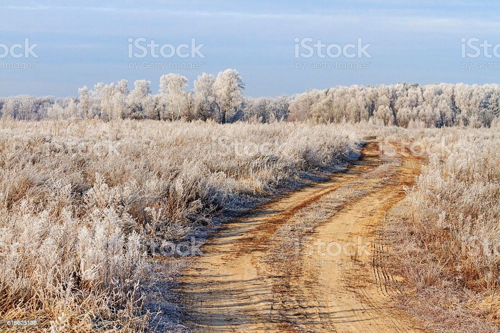 Field road covered with frost, the first stock photo
