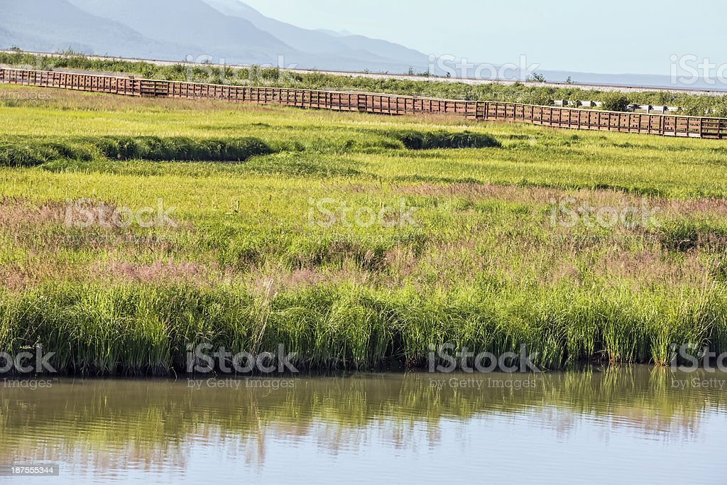 Field surrounded by fence with a creek royalty-free stock photo