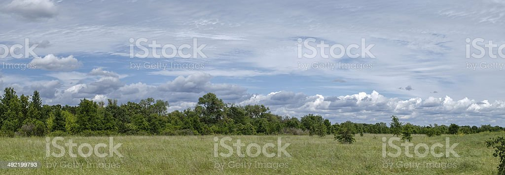 Field, trees, and clouds stock photo