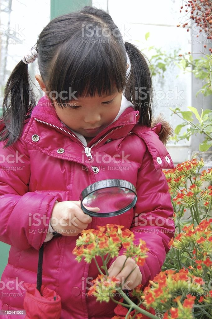 Field trip to the greenhouse royalty-free stock photo