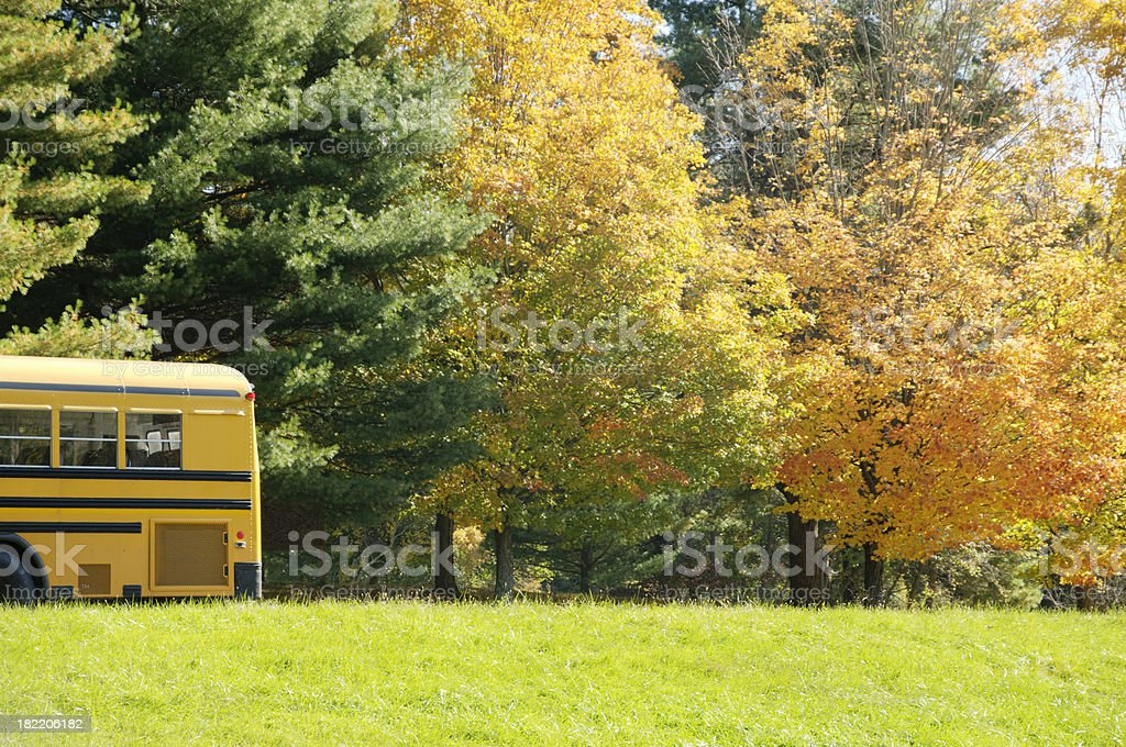 Field trip - yellow school bus parked in autumn forest royalty-free stock photo