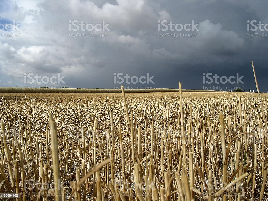 Field under storm royalty-free stock photo