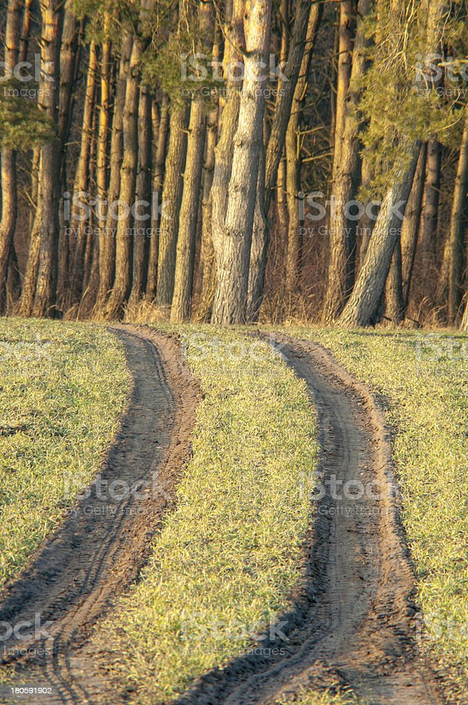Field way royalty-free stock photo