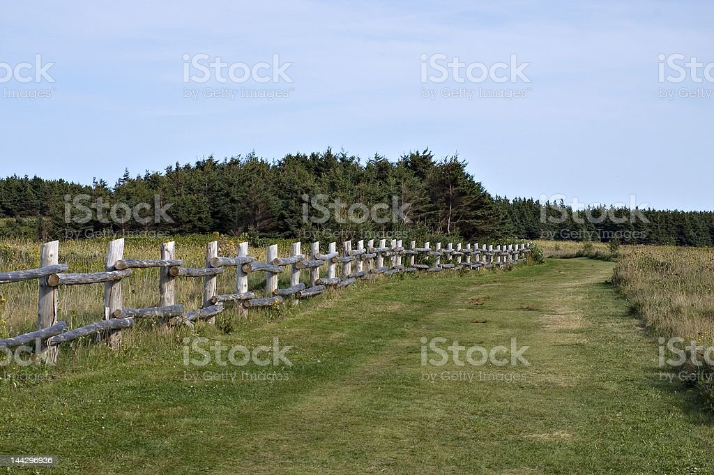 Field with an old fence royalty-free stock photo