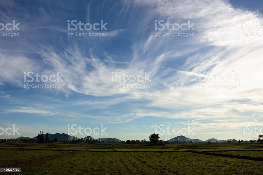 field with blue sky and cloud royalty-free stock photo