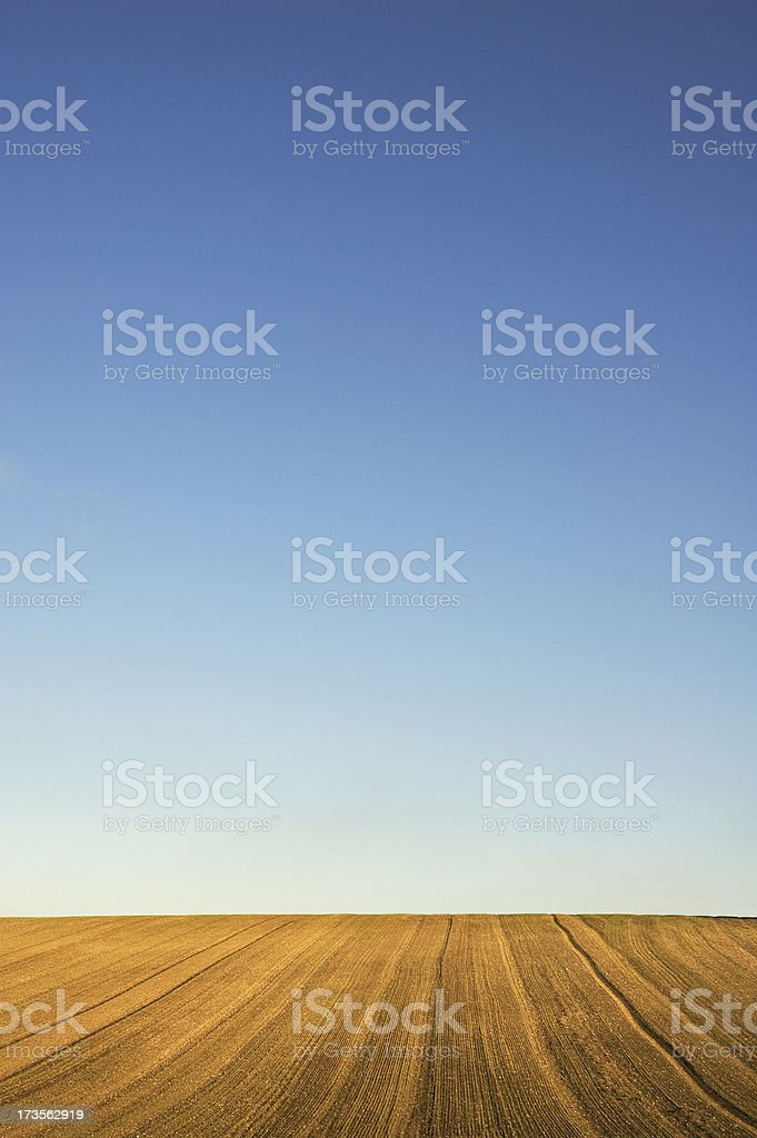 Field with blue sky royalty-free stock photo