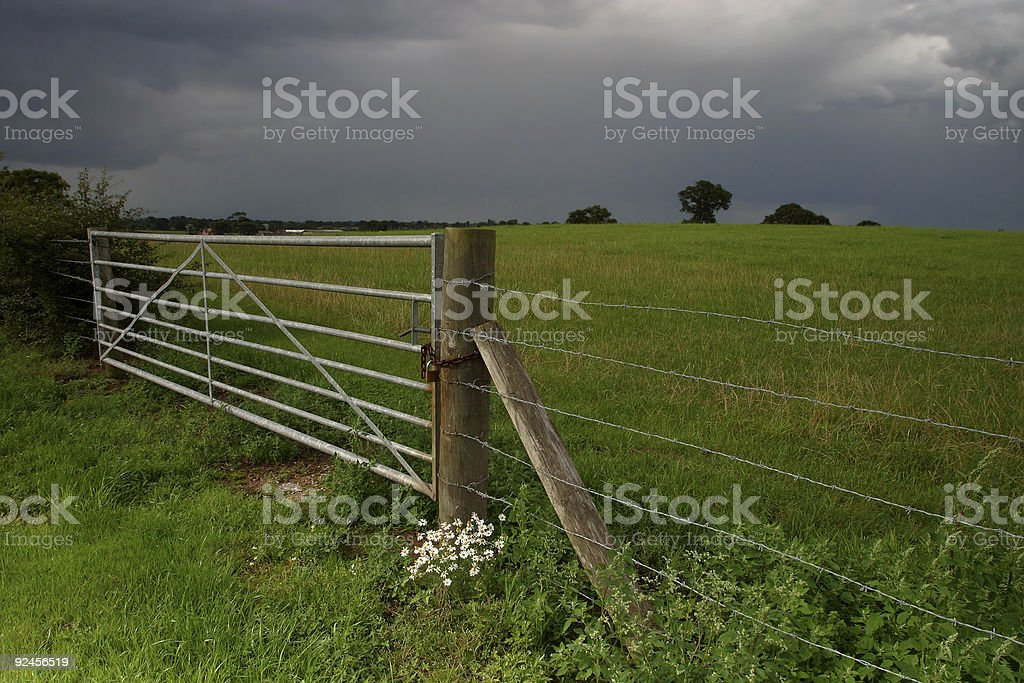 Field with Gate royalty-free stock photo