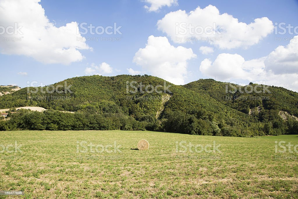 field with hay ball royalty-free stock photo
