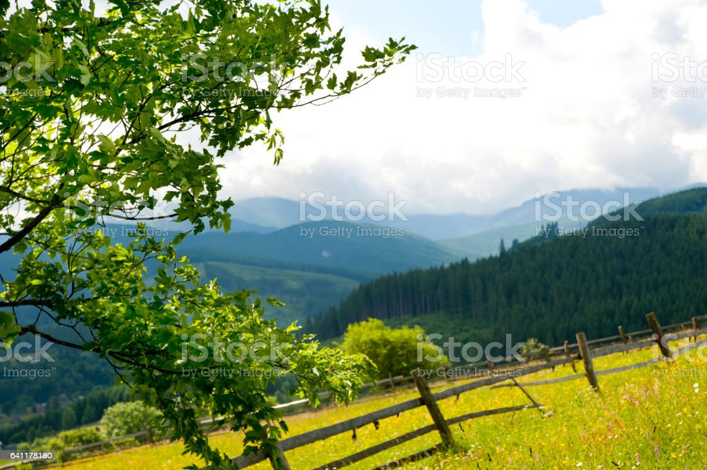 Field with haystack on mountains stock photo