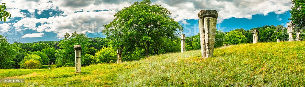 Field with rock carvings stock photo