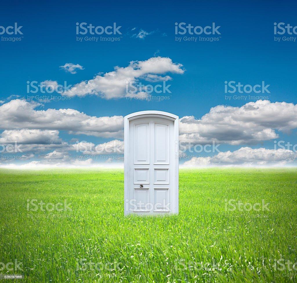 Field with white door stock photo
