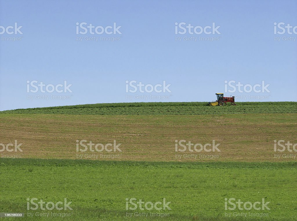 field work royalty-free stock photo