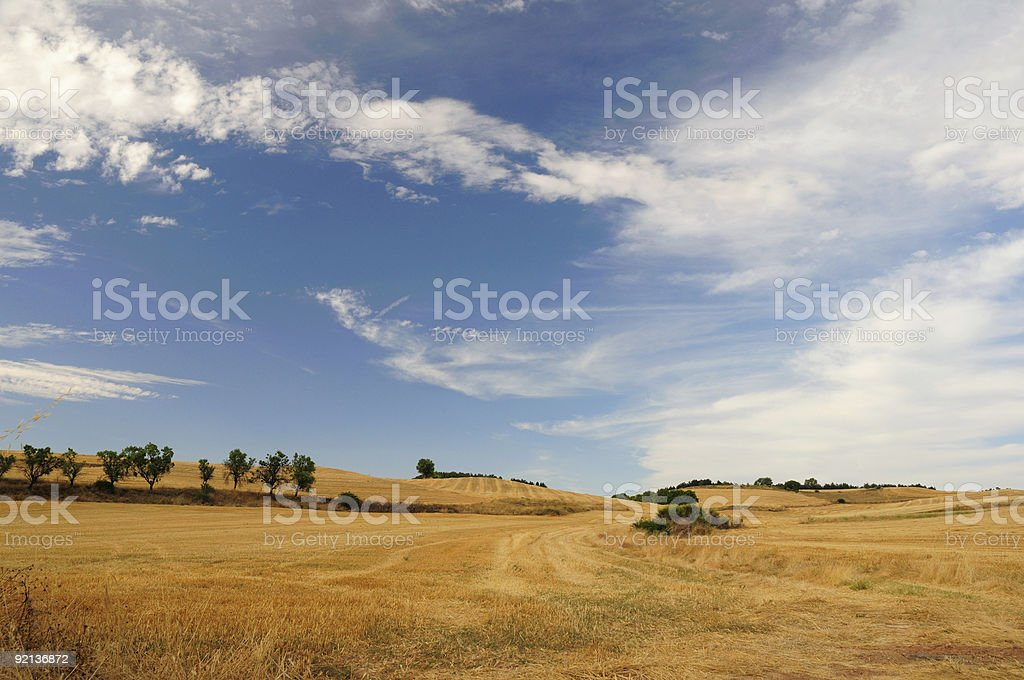 Fields after harvest stock photo