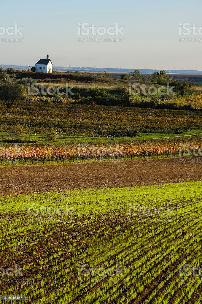 Fields and fields with chapel stock photo