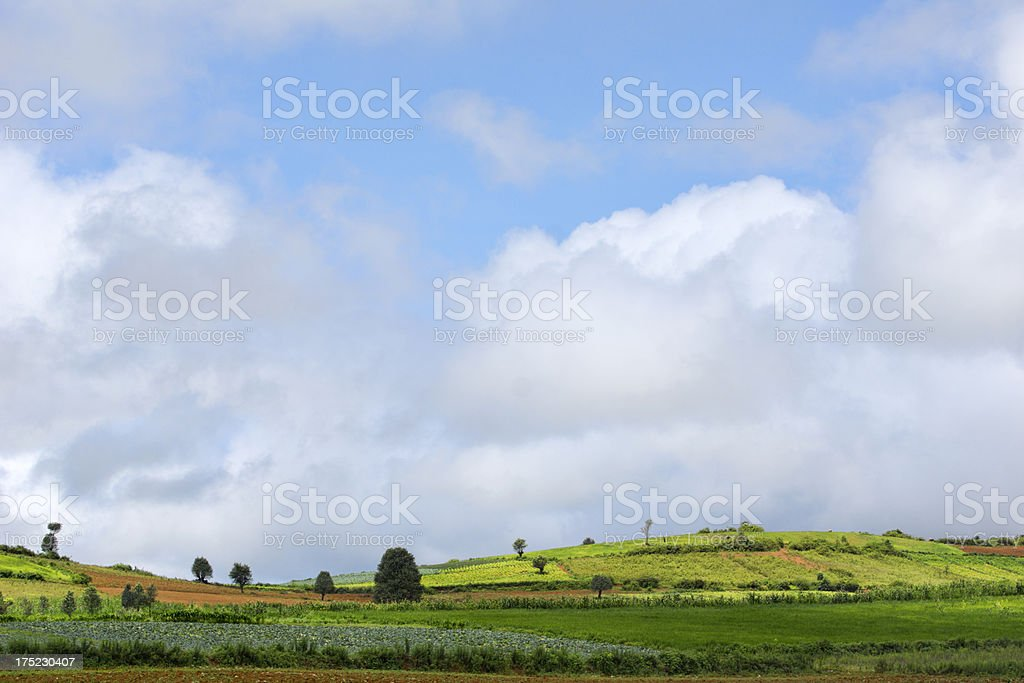 Fields and hills at plateau of Kalaw (Myanmar) royalty-free stock photo