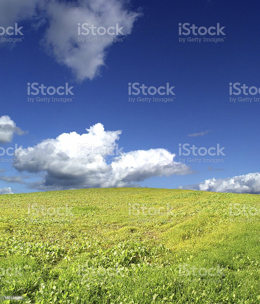Fields and Sky 1 royalty-free stock photo