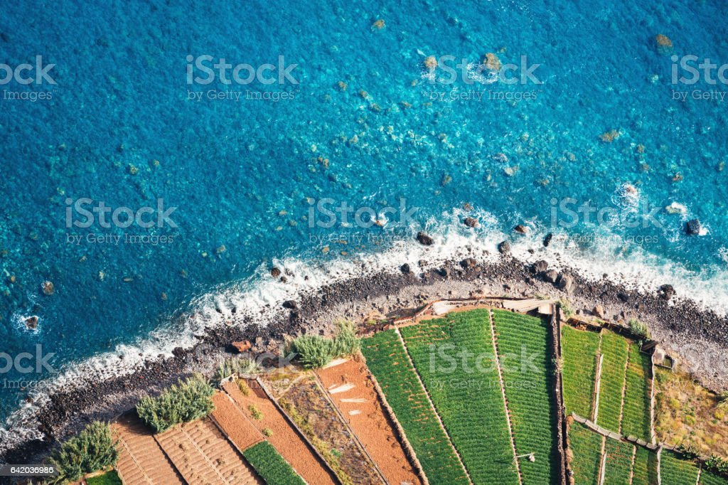 Fields By The Sea stock photo