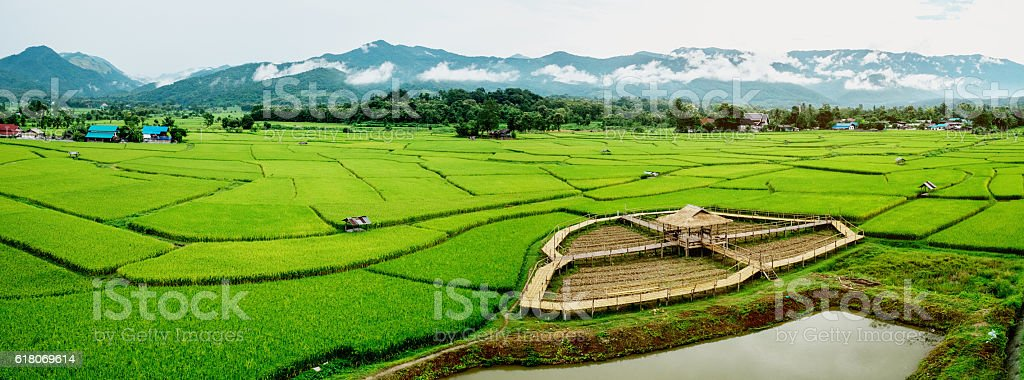 Fields in Nan, Thailand Panorama image stock photo