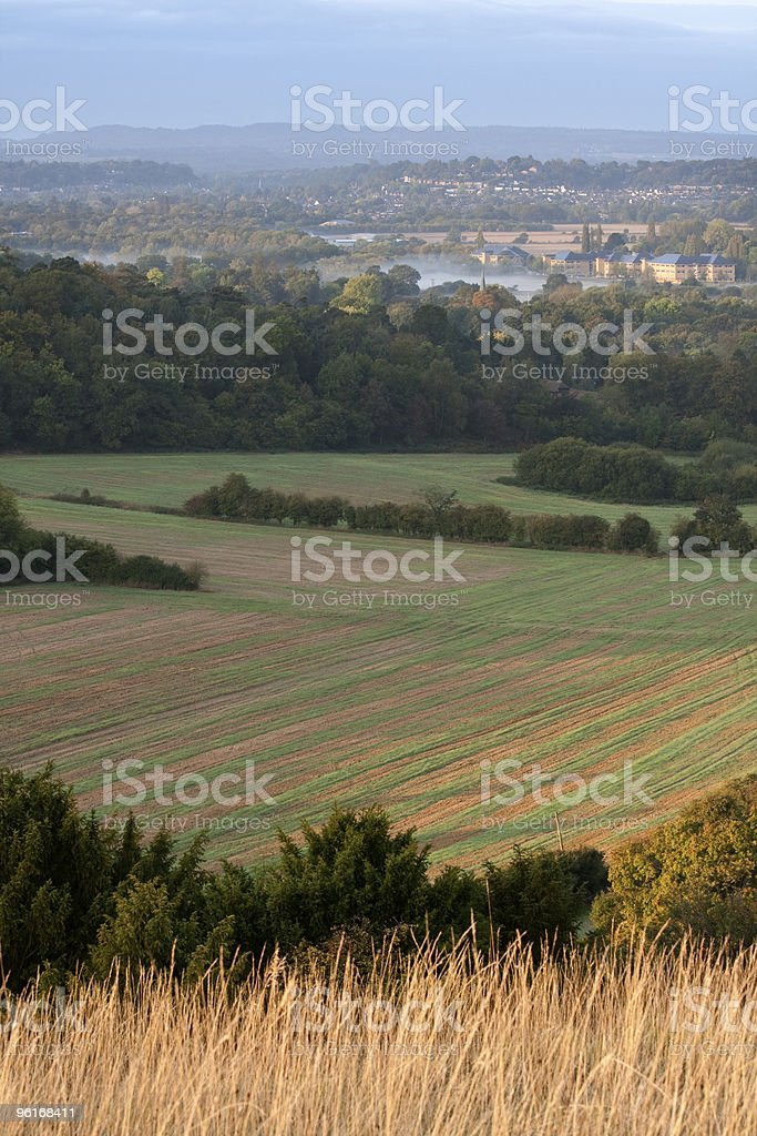 Fields in the Morning stock photo