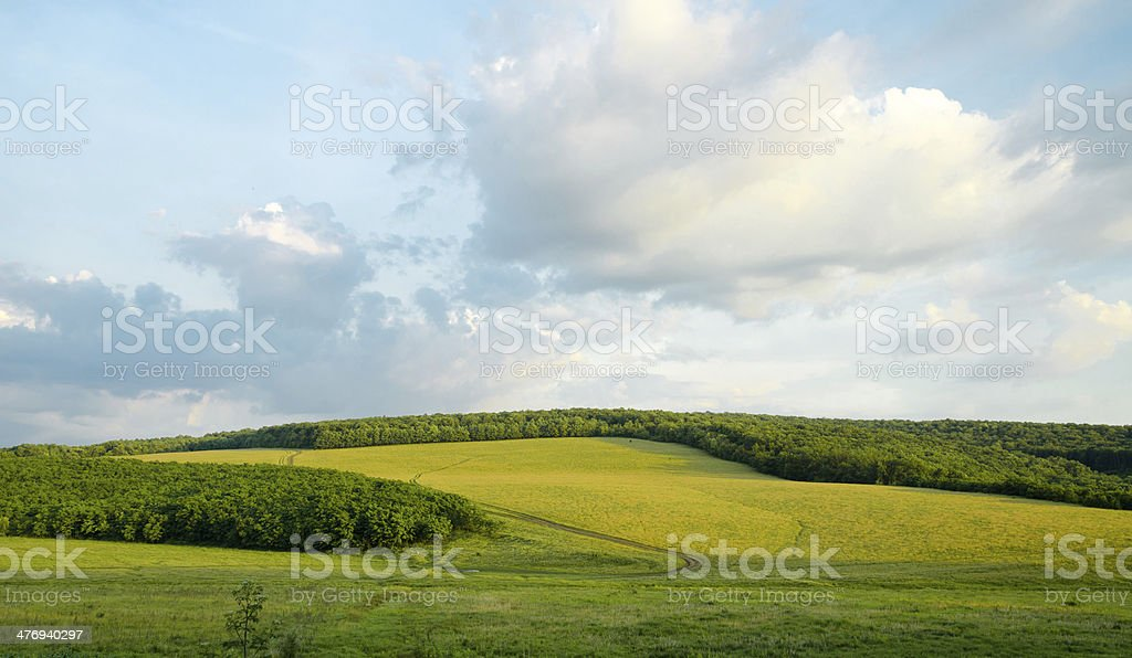 Fields of Green. Picturesque nature seasonal cloudscape of bright countryside stock photo