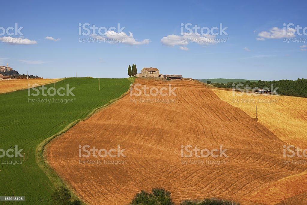 Fields of Tuscany royalty-free stock photo