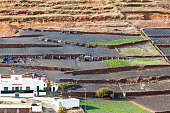fields on lapilli, the soil on volcanic ground
