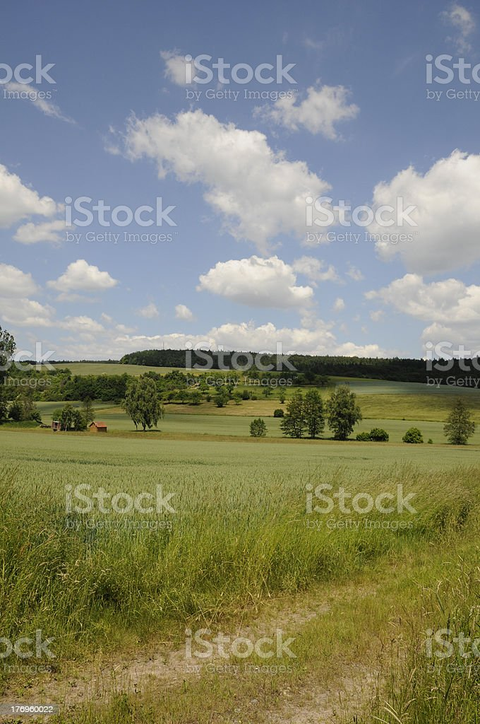 Fields stock photo