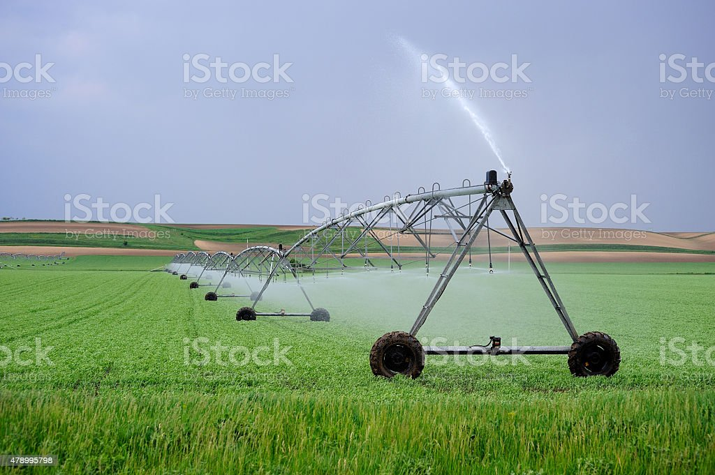 Fields with crop - irrigation equipment stock photo