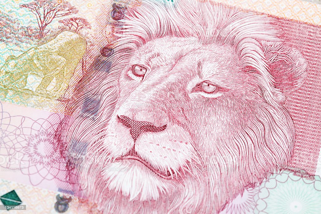 Fifty Rand South African Bank Note stock photo
