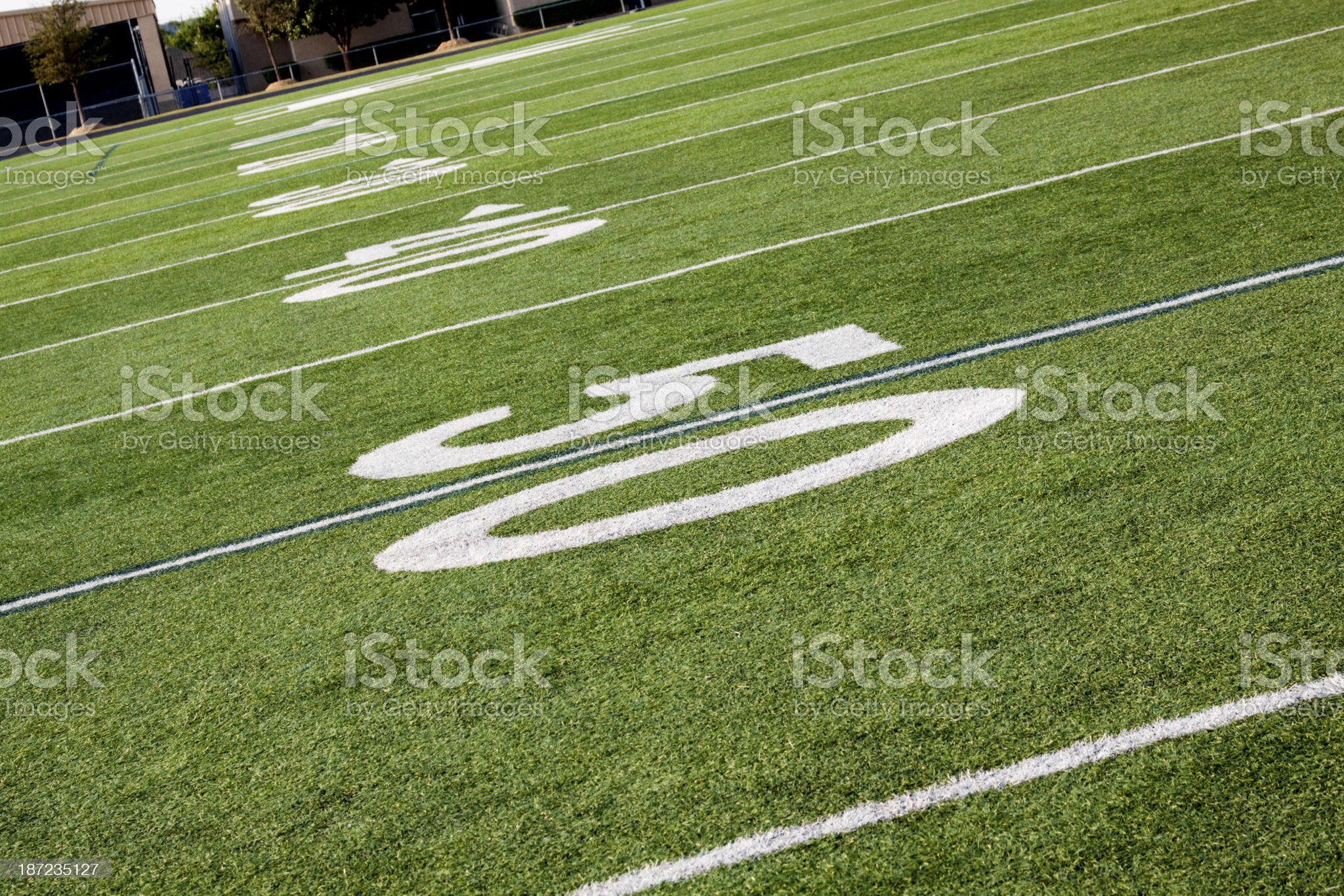Fifty Yard Line royalty-free stock photo