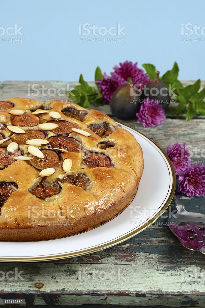 Fig Cake royalty-free stock photo