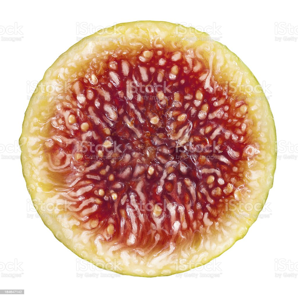 Fig Cross Section On White stock photo