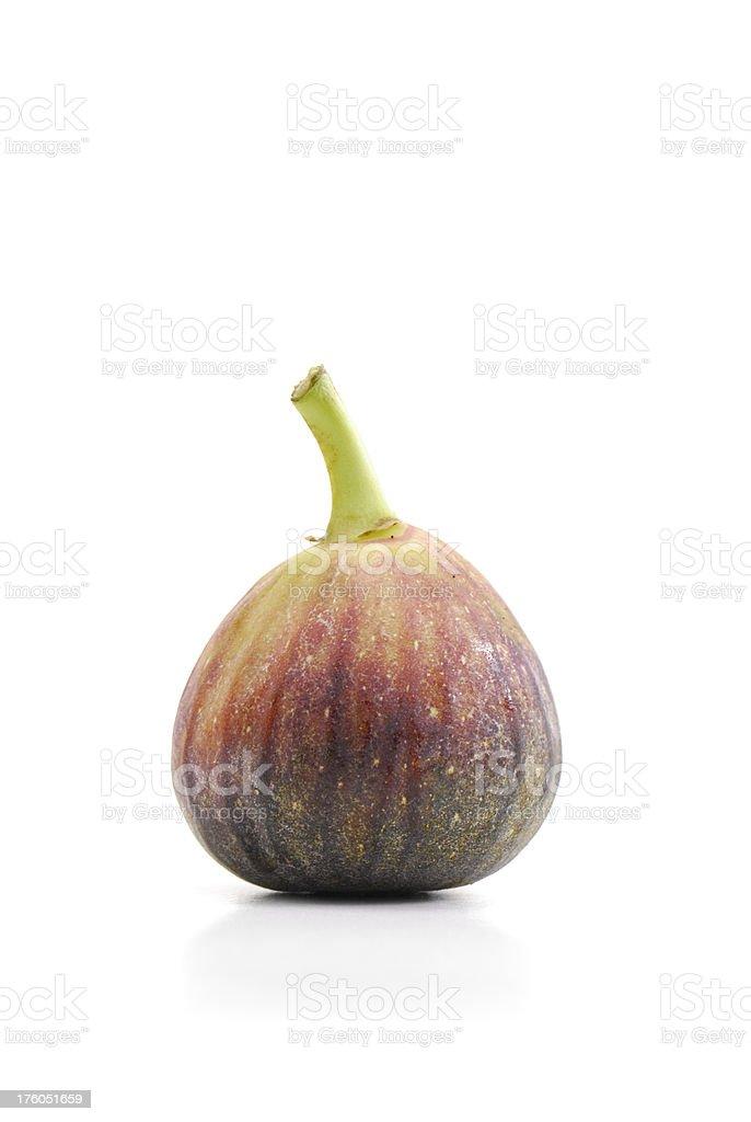 Fig on White Background stock photo