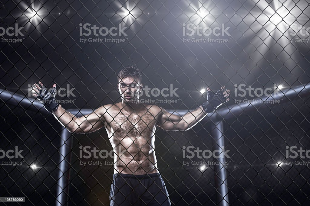 fighter in mma cage arena stock photo