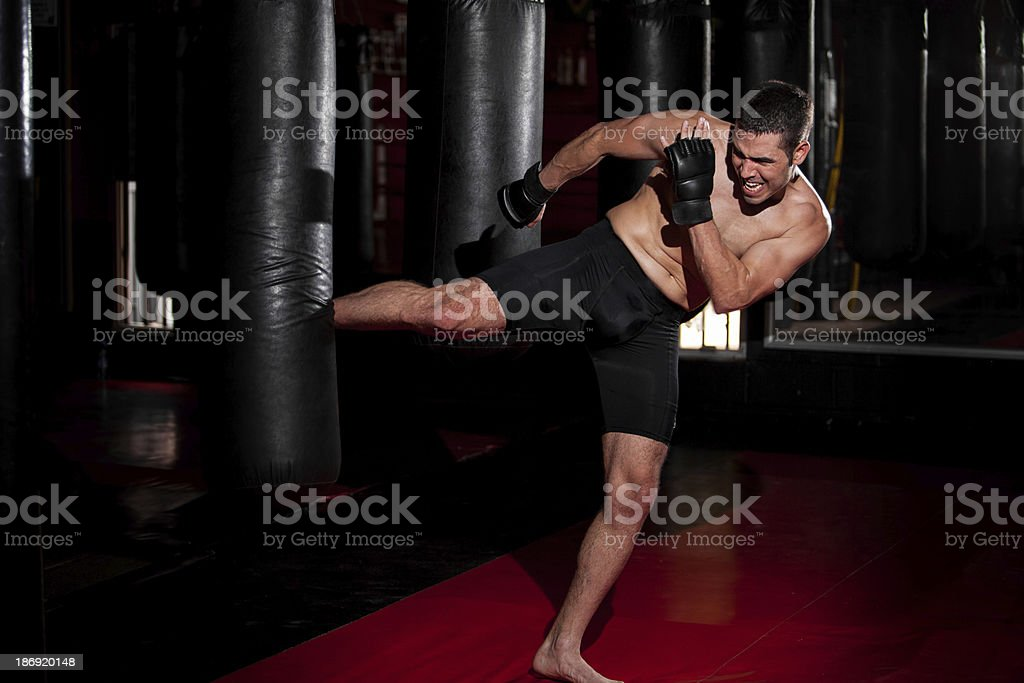 MMA Fighter training at a gym royalty-free stock photo